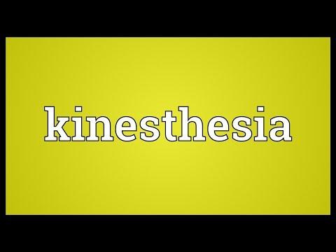 Header of kinesthesia