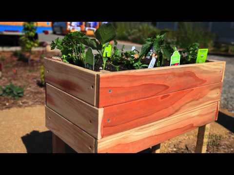 The Ecology Center: Veggie Box Workshop