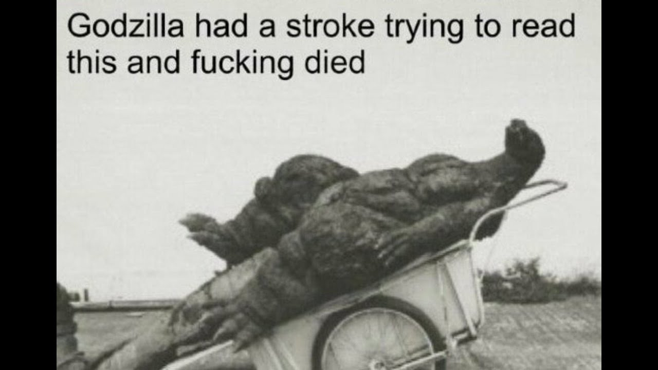 Godzilla Had a Stroke Trying to Read This and Fucking Died | Know Your Meme