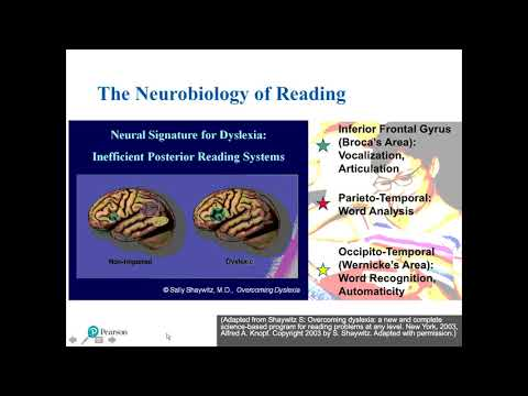 Assessment Solutions for Dyslexia Screening