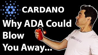 Cardano Review What 39 s up With ADA??