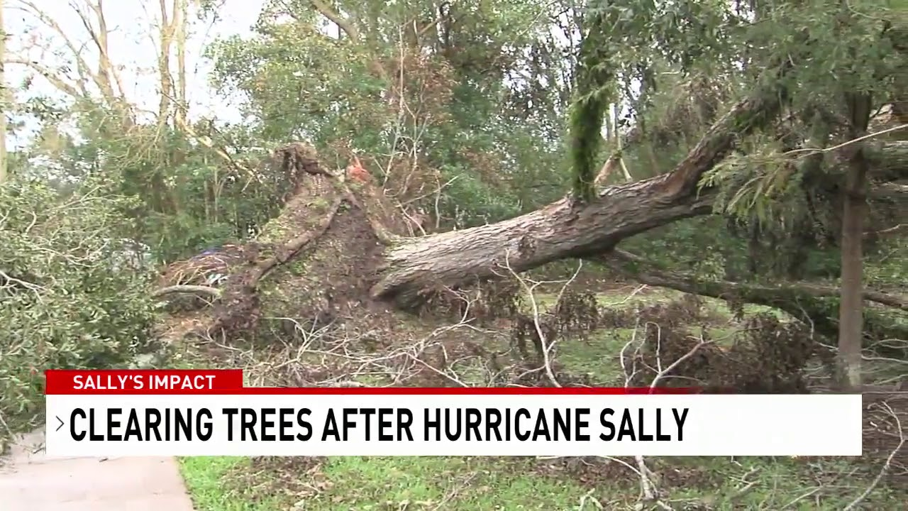 Baldwin County hurricane debris cleanup expected to take months - NBC 15 WPMI