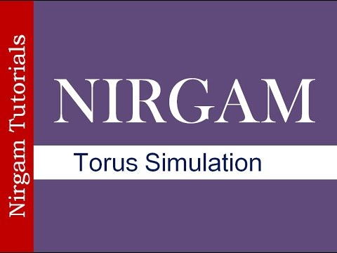 Torus Topology Simulation in Nirgam Simulator
