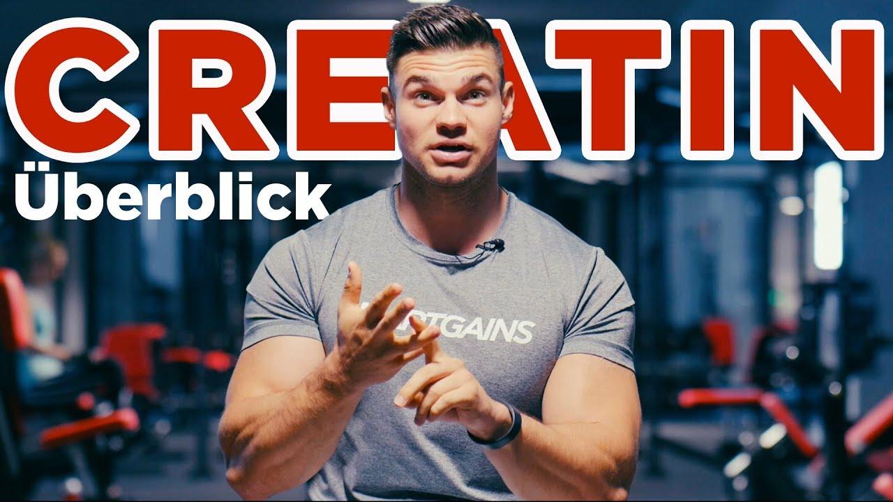 Creatin Für Was Ist Das Gut Smartgains Youtube