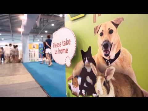 The Pawfect Match @ Pet Expo 2015