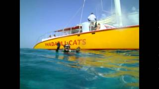 A CR Antigua Catamaran Sail and Snorkel