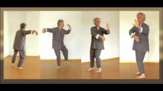TaiChi - Demovideo Yang Stil