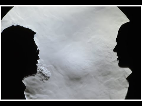 Распространение воздушных потоков во время разговора, кашля и чихания.