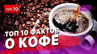 ТОП 10 фактов о кофе, о которых вы не знали