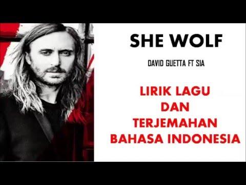 SHE WOLF - DAVID GUETTA ft SIA | LIRIK LAGU DAN TERJEMAHAN BAHASA INDONESIA