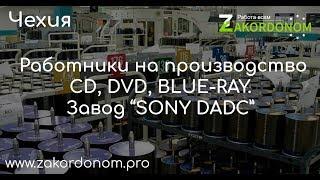 """Работа в Чехии! Завод """"SONY DADC""""!"""