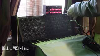 Korg SQ1 transpose with MS20, SH101 and SubPhatty