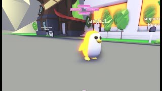 ANOTHER WAY TO GET A 🐧FREE RIDEABLE GOLDEN NEON PENGUIN🐧 IN ROBLOX ADOPT ME