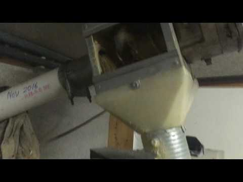 Poultry feed system