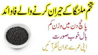 Tukh Malanga Ke Fayde in Urdu/Hindi (Basil Seeds Benefits)