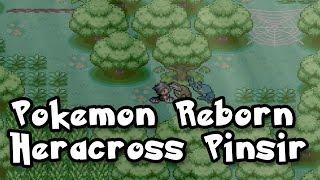 Pokemon Reborn South Aventurine Woods Puzzle, Herecross and Pinsir