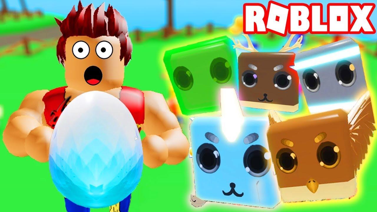 Roblox - Code Mới Update Pet Mới Và Trứng Token Huyền Thoại Mới | Pet Ranch Simulator