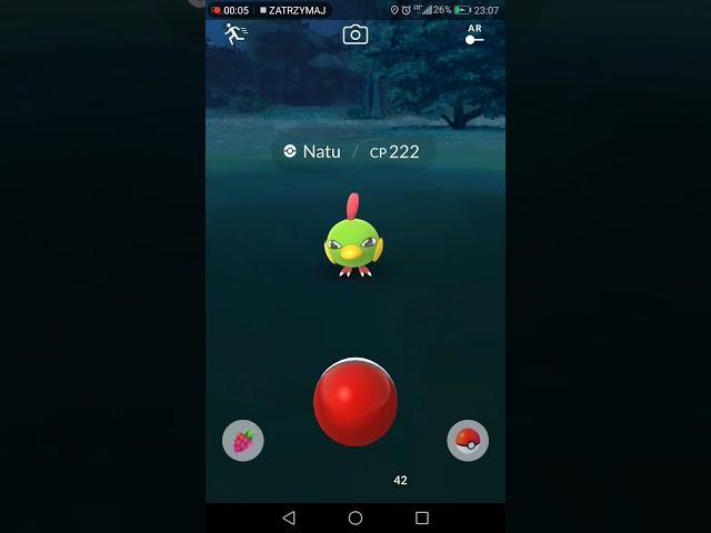 Jak rzuca? Exellenty w Pokemon Go - 1 lekcja