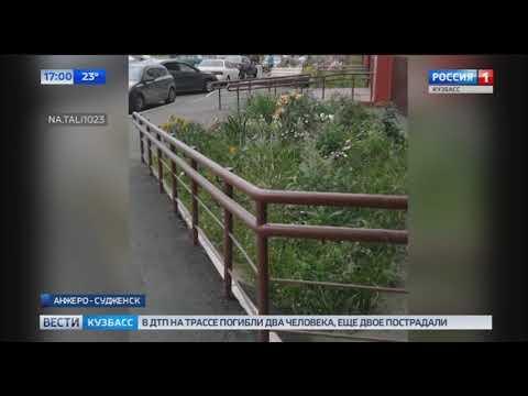 Смертельное сэлфи: в Анжеро-Судженске из окна многоквартирного дома выпала молодая девушка