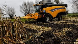 Kukurydza na ziarno 2017 | CCM | New Holland | JohnDeere | Valtra
