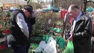 Targi ogrodnicze - 11-12.04.2015