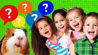 Вопросы от Подписчиков Челлендж Вопрос Ответ Вся Правда Про Канал Свинка Бузя Часть 2