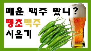 [홈브루잉]한국인의 매운맛! 청양고추 맥주 시음기