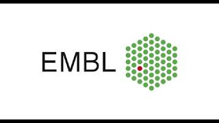EMBL-MCF LC-Orbitrap-MS/MS spectral library (tutorial 5/5)