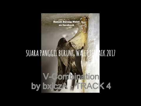 SUARA PANGGIL BURUNG WALET TERBAIK 2017