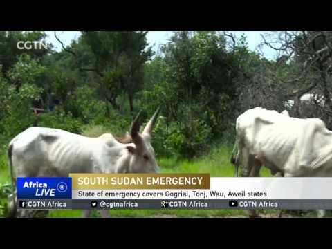 South Sudan state of emergency covers Gogrial, Tonj, Wau, Aweil states