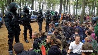 Recht auf Waldspaziergang