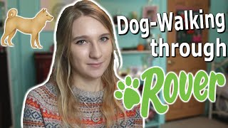 Dog Walking through Rover // Everything you need to know!