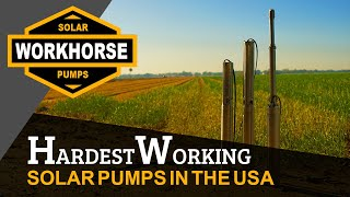 Workhorse Solar Pumps