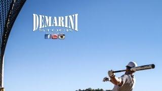 2013 demarini j3 juggernaut asa slowpitch bat review