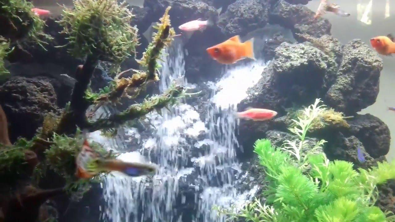 air terjun 3 aquascape 2 - YouTube