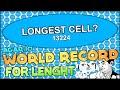 AGARIO WORLD RECORD: LEADERBOARD RECORD FOR LENGTH ( ��� ���� ���) PHANTASY AGARIO!! (Agar.io #77)