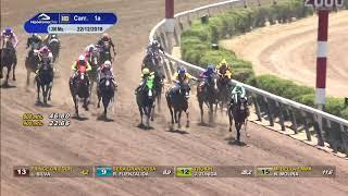 Vidéo de la course PMU PREMIO ULTRAREY