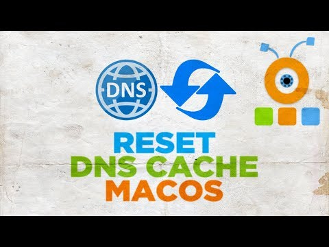 How to Reset DNS Cache in macOS