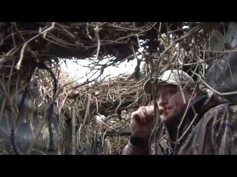 Reelfoot Lake Duck Hunt - Migration Ambush TV