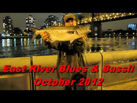 NYC East River Urban Anglers Fishing - October 2012
