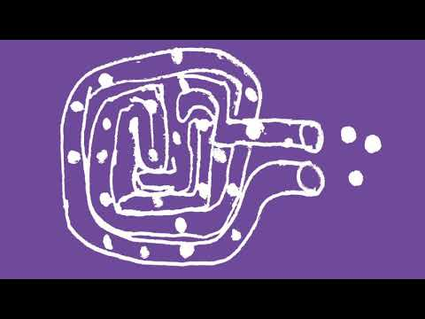 Giorgio Dursi - Monologue for meta-sleeping Intestine (excerpt)