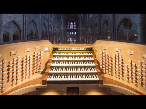 DAmico: Restaurador del órgano de Notre Dame