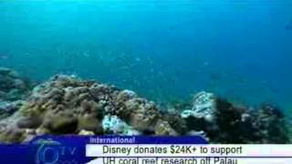 Disney Donates Funds To Support UH Coral Reef Research Off Palau