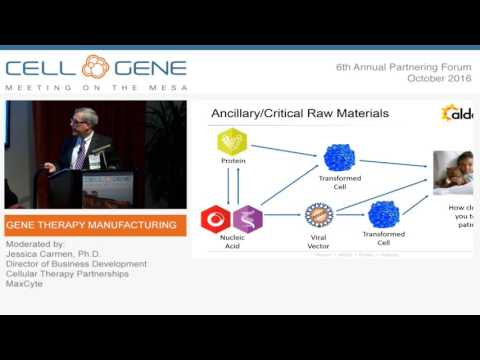 Gene Therapy Manufacturing Workshop