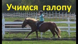 """Когда """"пора"""" переходить на галоп? Учимся ездить на лошади."""