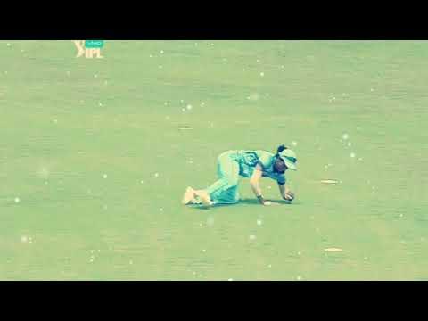 Harmanpreet kaur take world best catch in the history of women cricket / supernovas vs trailblazer