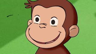 Jorge el Curioso en Español  El Miércoles de la Marmota Mono Jorge Caricaturas para Niños