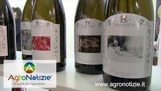 Donne della Vite, relazione tra vino e paesaggio al Vinitaly 2017