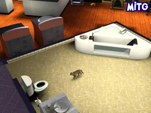 Les Sims 3 Animaux Et Compagnie - Le Chat