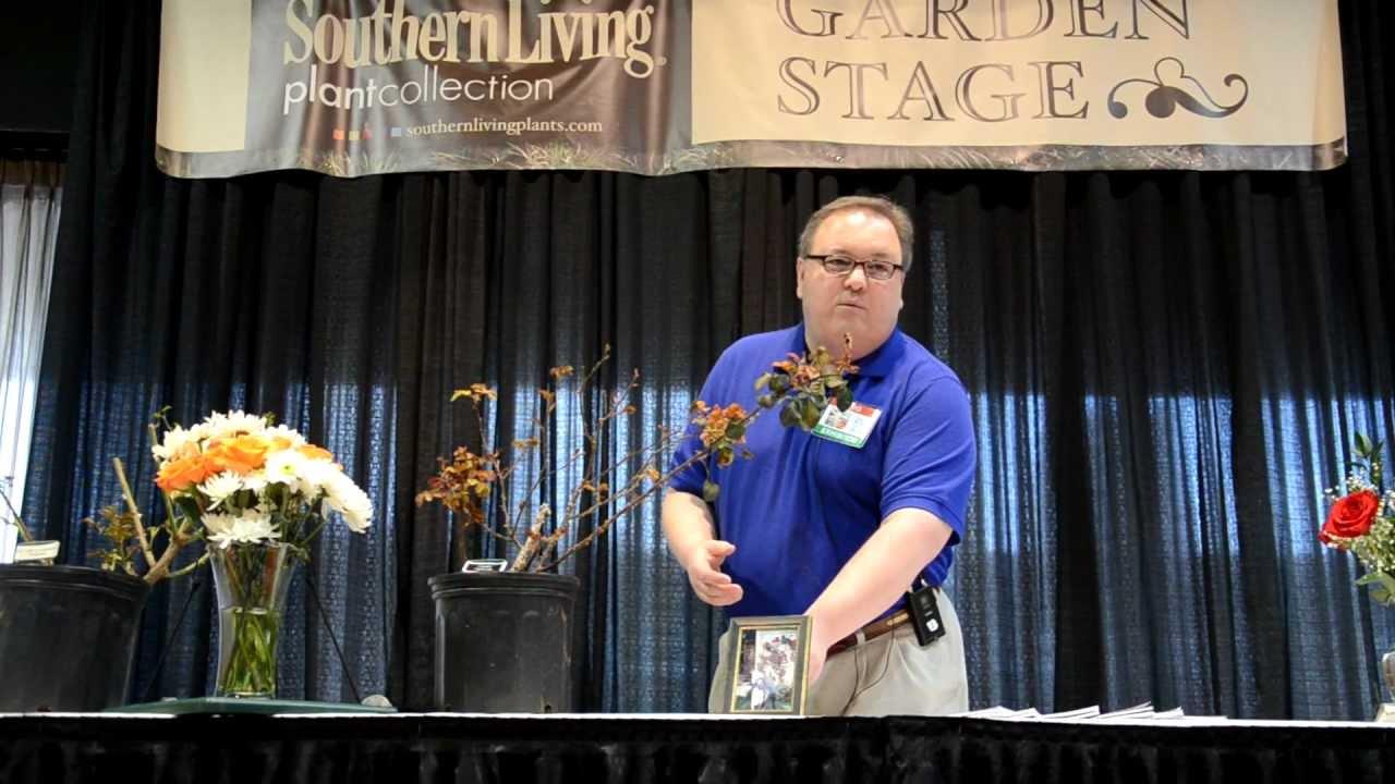 Growing Roses In Alabama   Birmingham Home U0026 Garden Show   YouTube